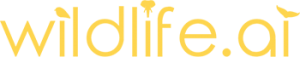 Logo of wildlife.ai